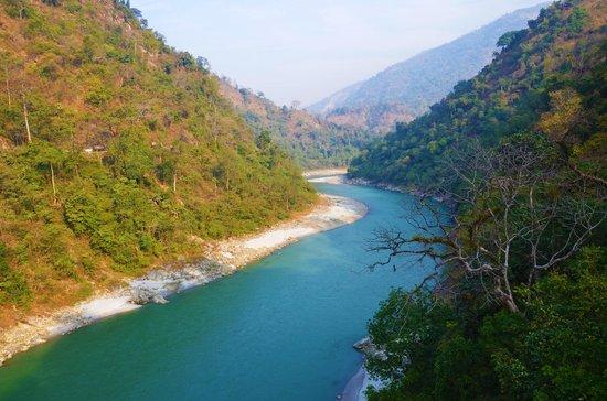 Gorumara National Park, Ινδία:                   Teesta