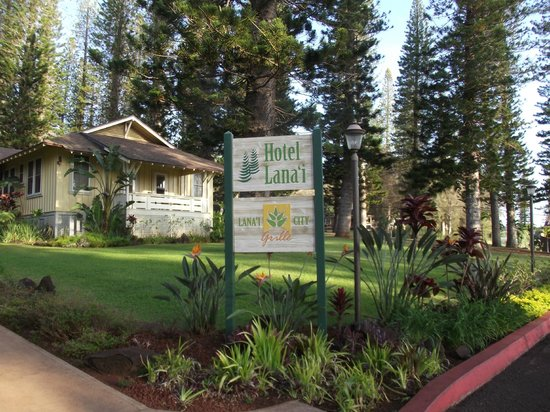 Hotel Lanai:                                     location, the bus comes every 15 mins to take you own to the
