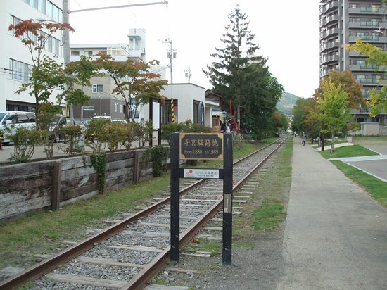The Site of Temiya Line