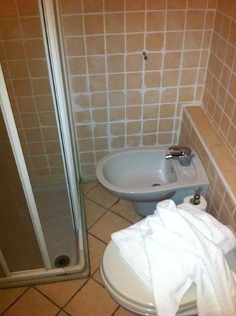 Albergo Orologio:                   Bidet incastrato tra WC e doccia e quindi inaccessibile utilizzo