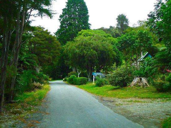 Raetihi Lodge: View of the road beside lodge