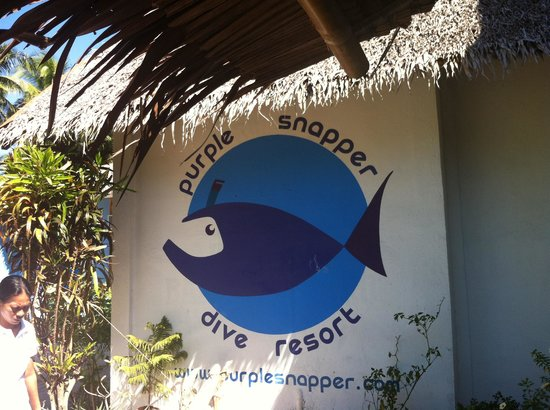 purple snapper dive resort