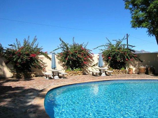 De Leeuwenhof Hotel/Guesthouse:                   Poolbereich