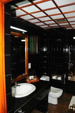 Earl's Regency: the bathroom