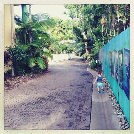 Tropical Nites: driveway baby stroll