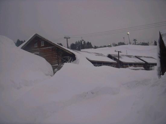 Cupid Village:                   2月撮影、雪で埋れてますかが毎日歩行者の為に整備してくれています