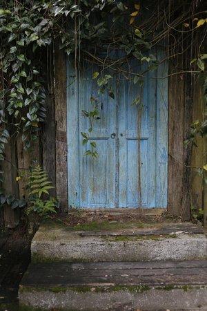 Imah Seniman:                   The Room's door