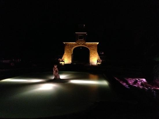 Manoir de Lebioles :                   night freezing view