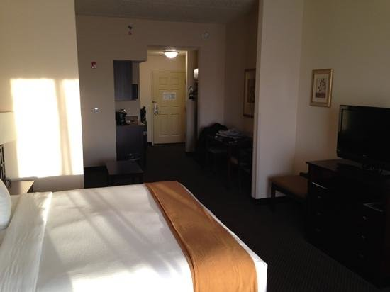 Holiday Inn Express Hotel & Suites Chicago Airport West:                   One Bed-Suite