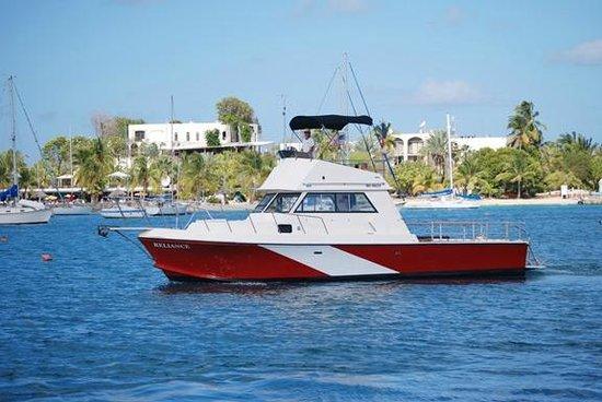 St. Croix Ultimate  Bluewater Adventures (SCUBA), Inc.: Our northshore dive boat Reliance