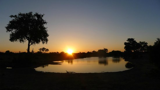 Tanda Tula Safari Camp:                   Kruger Sundowner !
