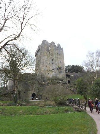 Замок и сады Бларни: Blarney Castle