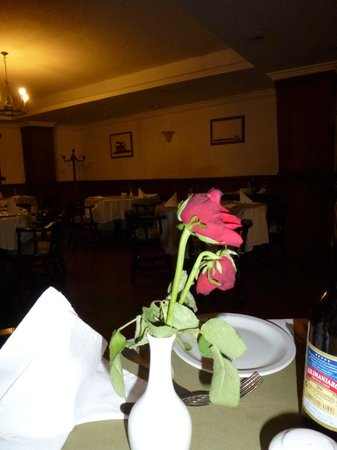 Impala Hotel:                   At the table of the restaurant