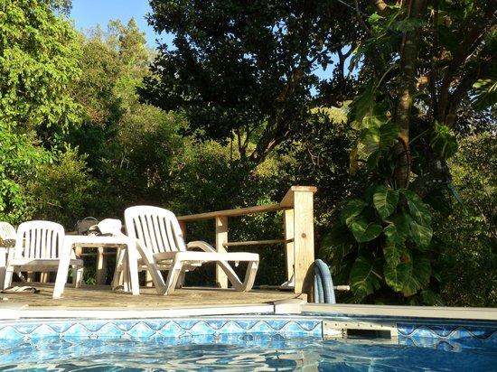 Zandoli Inn:                   La piscine