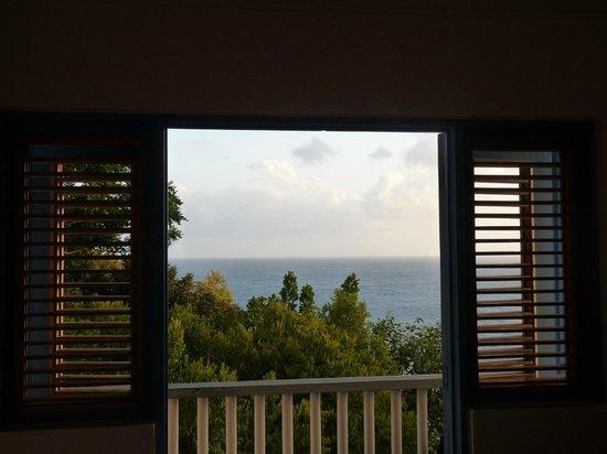 Zandoli Inn:                   Vue de la chambre