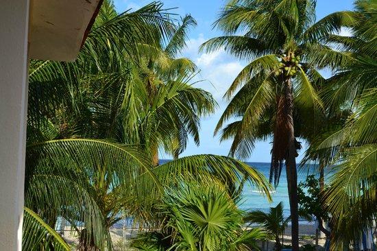 Cabañas Maria del Mar:                   vista desde el balcón