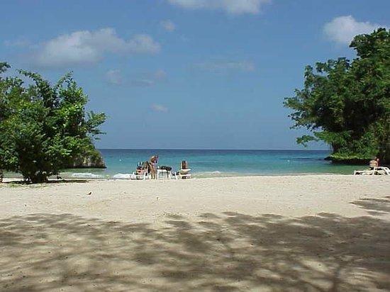 Frenchman's Cove Resort:                   Great beach