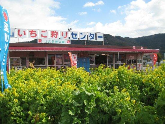 Nirayama Ichigogari Center