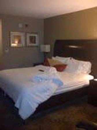 Hilton Garden Inn Toronto / Brampton :                                     Comfortable King Size bed with a ton of feather pillows and