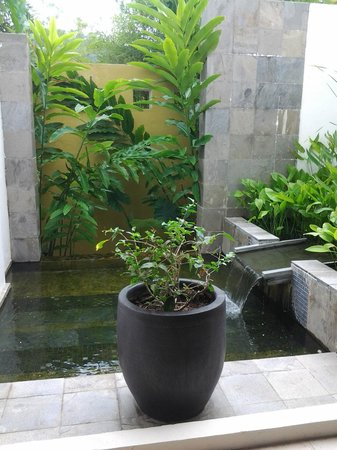The Danna Langkawi, Malaysia:                   This picture took place in the public restroom lobby level. Nice mini garden