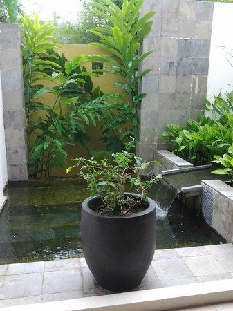 เดอะ ดันนา ลังกาวี มาเลเซีย:                   This picture took place in the public restroom lobby level. Nice mini garden