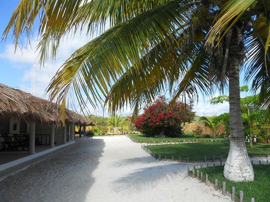 El Paraiso Tulum: area antistante le camere