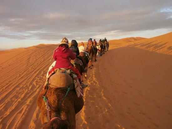 Desert Dream 4x4 Tours: Trekking in Erg chebbi