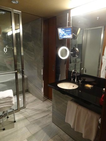 Grand Hyatt Berlin:                   Thought through bathroom, with two acces doors