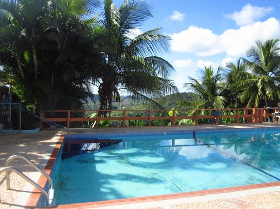 La Paloma Guest House:                   Pool and view