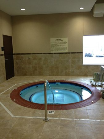 Hampton Inn & Suites Effingham: Hot tub