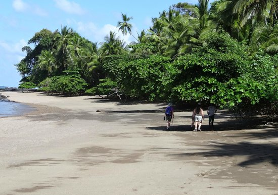 Punta Marenco Lodge:                                     pristine beach