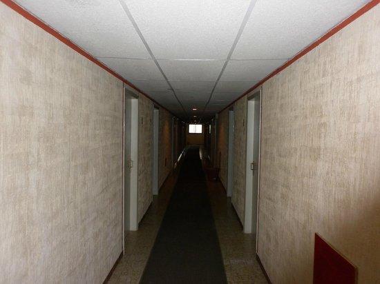 Hotel Minerva :                   el pasillo tipo pelicula de terror Clase B