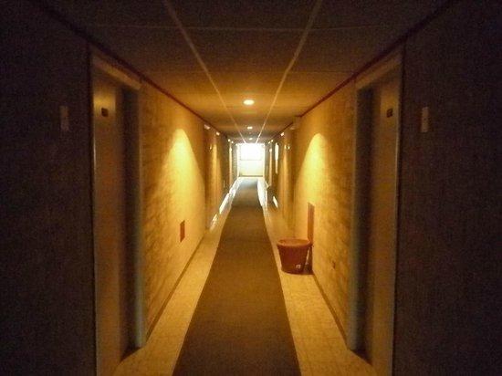 Hotel Minerva :                   el pasillo tetrico pero sin flash