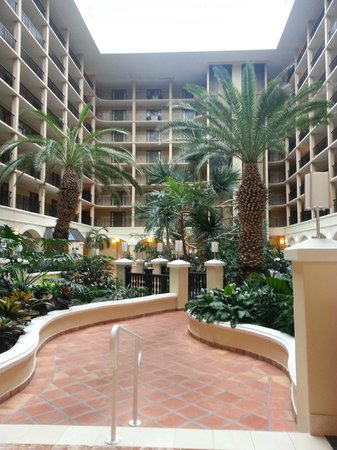 Four Points by Sheraton Suites Tampa Airport Westshore: Nice Atrium,would have preferred this view instead of the busy road
