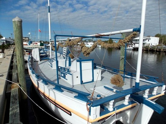 2 georges fishing boat return and feeding the pelicans for Tarpon springs fishing