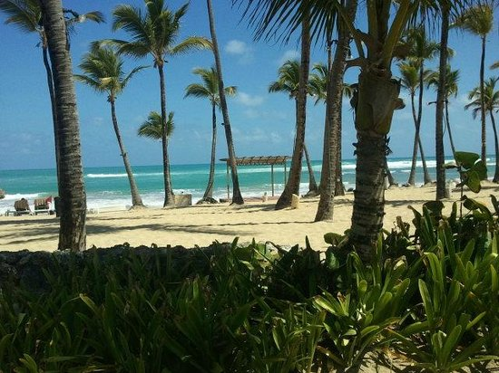 Excellence Punta Cana:                   Excellence's beach