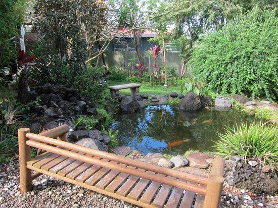 Hale Ho'okipa Inn Makawao:                                     Koi pond