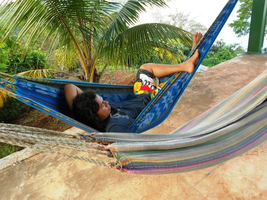 Cabinas El Mirador Lodge:                                                                         hammocks at lookout poin