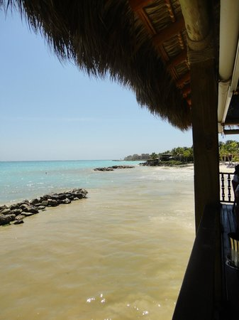 Sanctuary Cap Cana by Playa Hotels & Resorts:                   View of beach from Blue Marlin