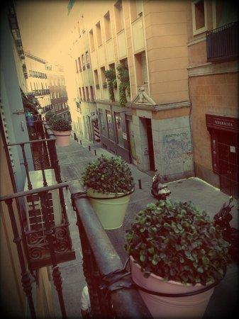 THC Latina Hostel:                   View from my tiny but cute balcony