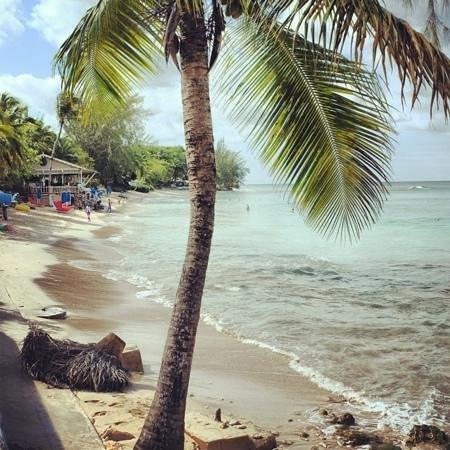 One Battaleys Mews:                   пляж