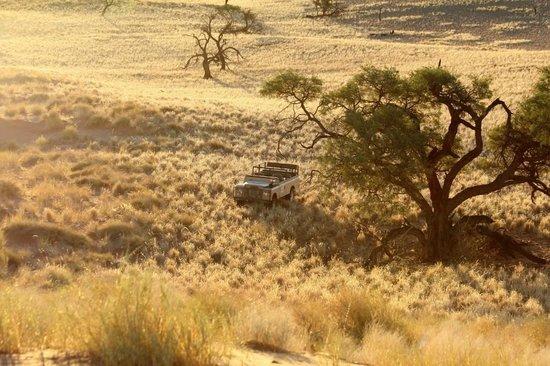 Tsondab Valley Scenic Reserve:                   Sundowner-Tour Tsondab