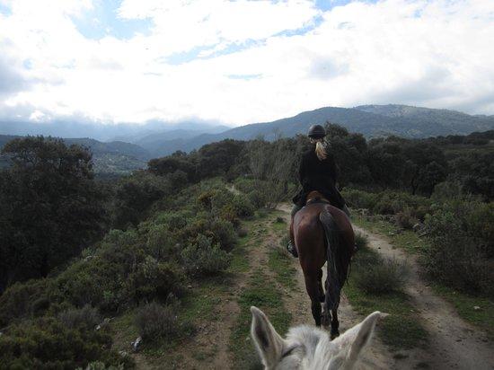 Hotel Hacienda Puerto de las Muelas:                   Paardrijden