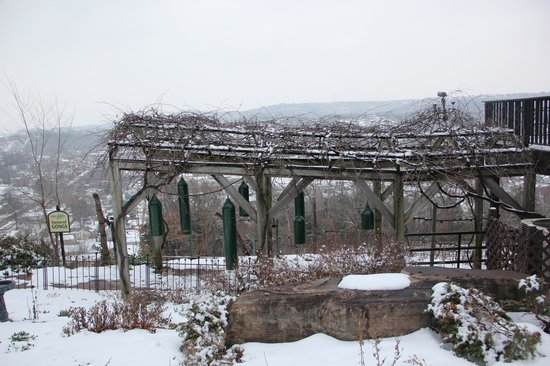 Hermann Hill Vineyard Inn & Spa and River Bluff Cottages:                   Garden of Gongs on the north side of the hotel.