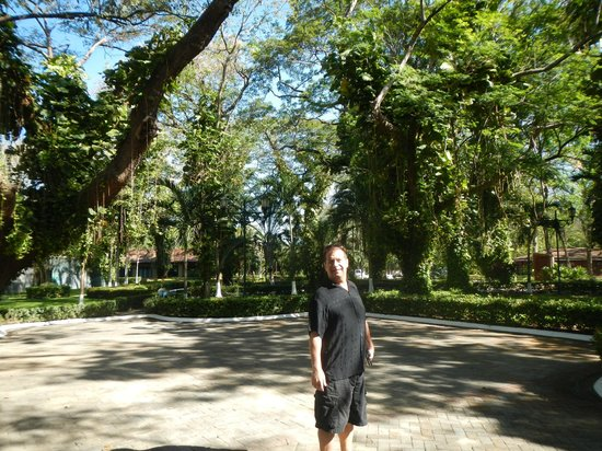 Casa Conde Beach-Front Hotel:                   Grounds