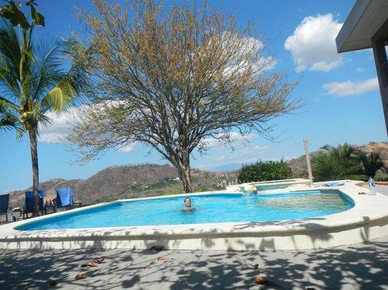 Hotel La Finisterra:                   My Favorite Tree