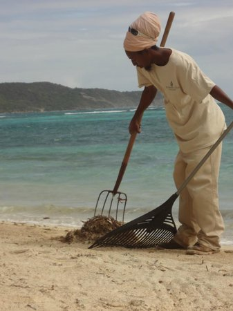 St. James's Club & Villas:                   Coco's Beach clean up
