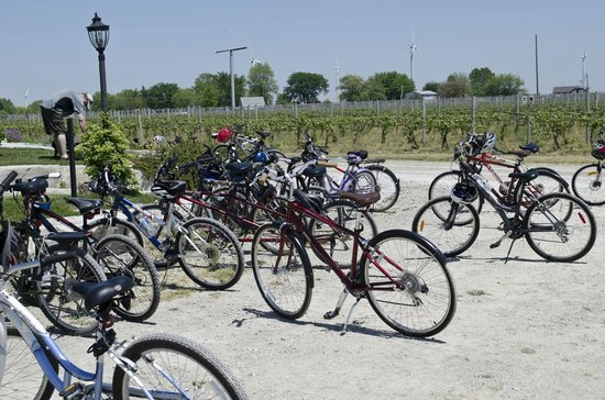 WindsorEats: Wine Trail Ride cycling tour makes a stop.