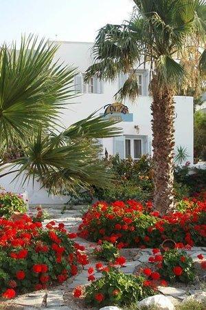 Zorzis Hotel : Exterior View