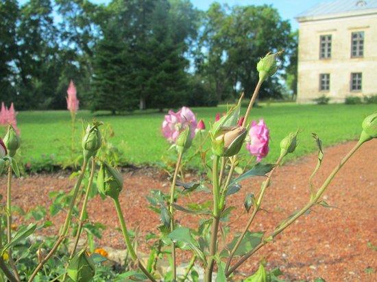 Ontika Manor Guesthouse: Grounds